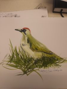 The Laughing Green Woodpecker by Francine Davies Art